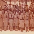 1950-afis