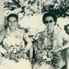 1958-11-geo-inde-4